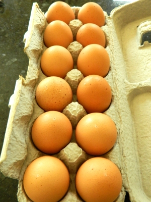 local, organic free range eggs are my choice