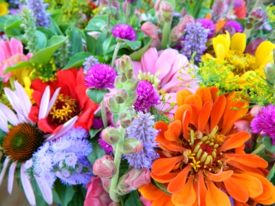 buy local flowers and reduce the carbon footprint and pesticide use of imported flowers