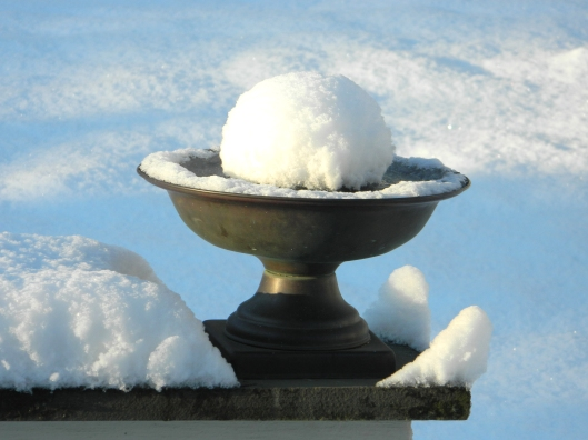 add a small water heater to your birdbath during frozen winter days