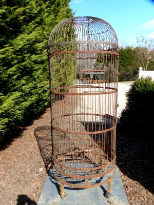 the bird cage