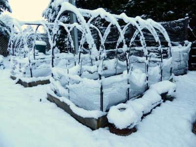 raised beds at rest