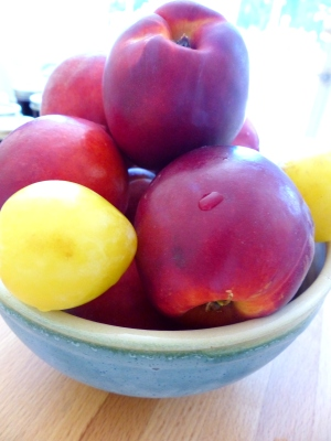 peaches, nectarines, and plums, oh my!