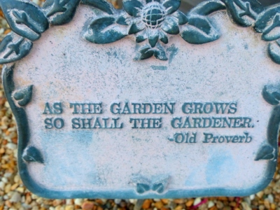 a telling proverb
