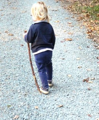 young beagle hunt member ~ complete with walking stick