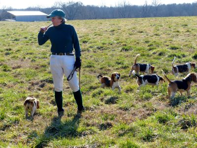 one of the joint masters calling beagles together in the field