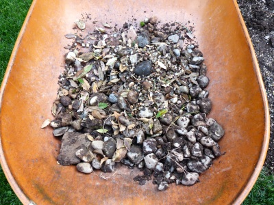 after the holly was cut off, I raked the largest stones into the wheel barrow and reused the pile in the lower garden