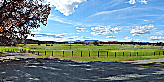 taking liberties with this shot's edits to create a painterly vista