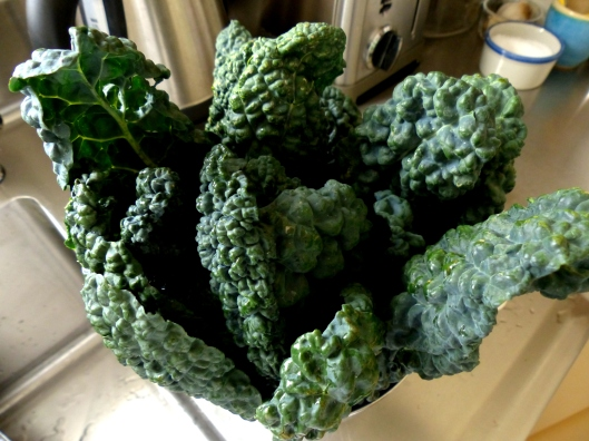 I fell in love with a new kale ~ a must in my daily morning smoothies