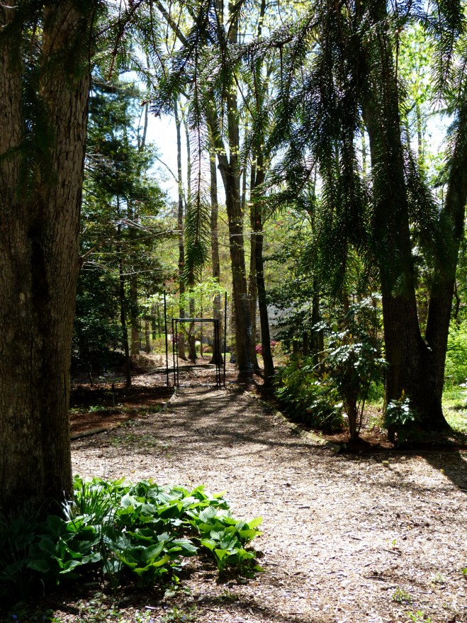 a quiet path leads to the adjoining property