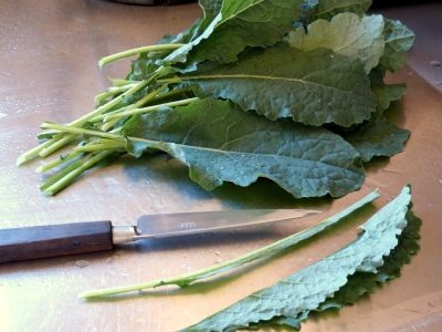 fold the rinsed leaves of kale lengthwise and with a sharp knife, slice off the long stem