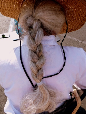 I could not resist this image. An enviable braid.